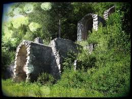Nuovo parco periurbano ad Avezzano. Proposta e priorità su intervento forestale di utilizzazione selvicolturale in località